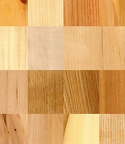samples of wood